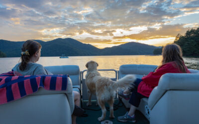 Tips for Sailing With Your Dog on Board